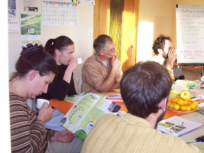 Formation idée au projet 2007 Finistère